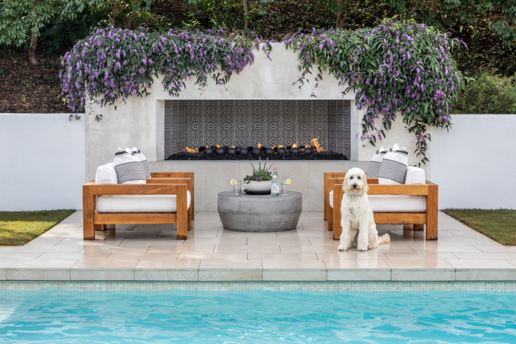 Interior Design Photography with Dogs | Adam Taylor